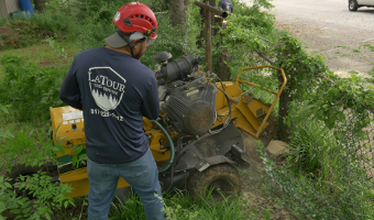 Stump Grinding Keller